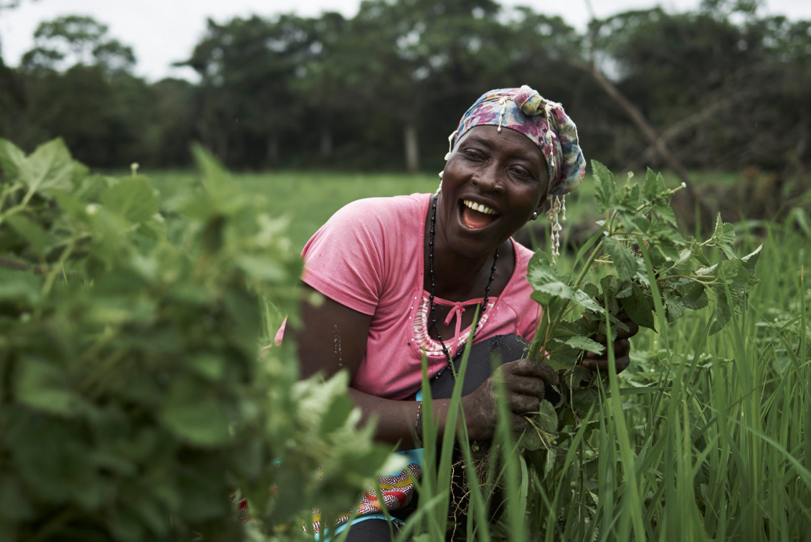 Tombohuaun female villager picking crops in a field smiling